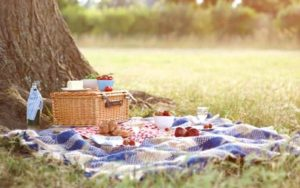 Pleasures of Puhoi: Picnic in the Park @ Riverside Park | Puhoi | Auckland | New Zealand
